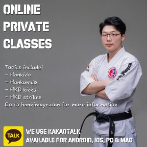 online private classes hankido
